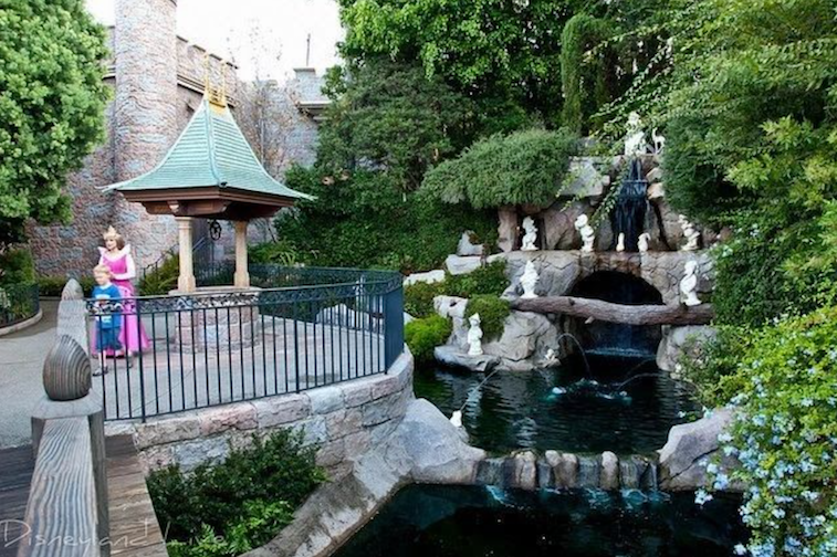 wedding planning in New Mexico, Colorado, Wedding Collective, travel engagement, local engaged couples, proposal spot, Disneyland, proposal inspiration, wedding travel expert